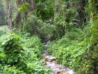 San Rafael River Baharona