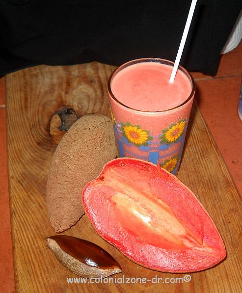 zapote juice seed and fruit