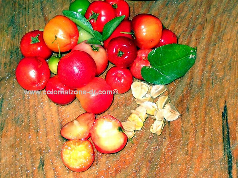 cereza cherries, and seeds