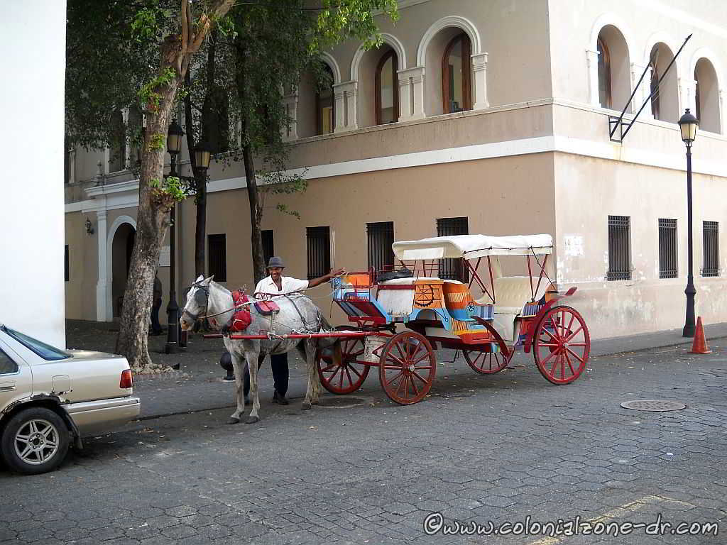 horse and buggy tours in cuidad colonial