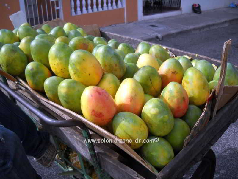 ripe, sweet mangos in a cart ready to eat
