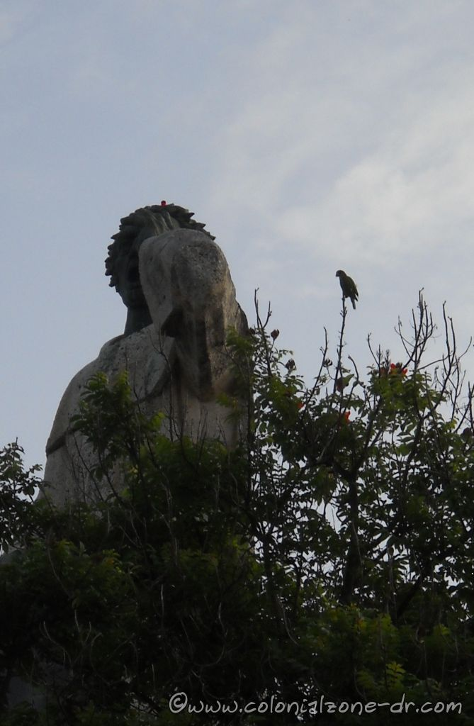 A parrot sitting on a tree at the statue montecino