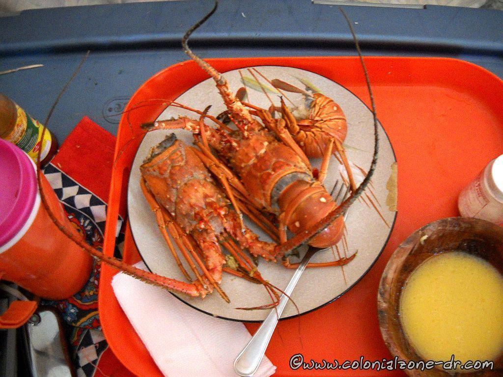 Langosta - Spiny lobster