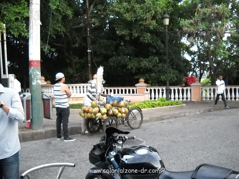Cocoero selling coconut water in the streets of Colonial Zone