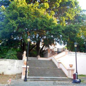 Calle Las Damas - Escaleras las Damas