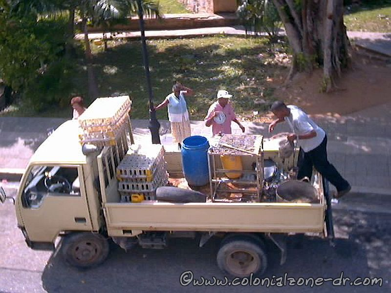 Truck vendor bringing live chickens to your door