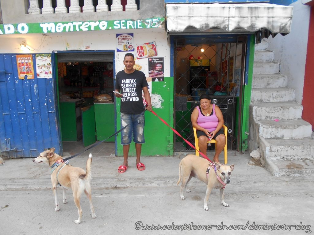 Dominicans in front of a Colmado with the Dominican Dog Blog dogs.
