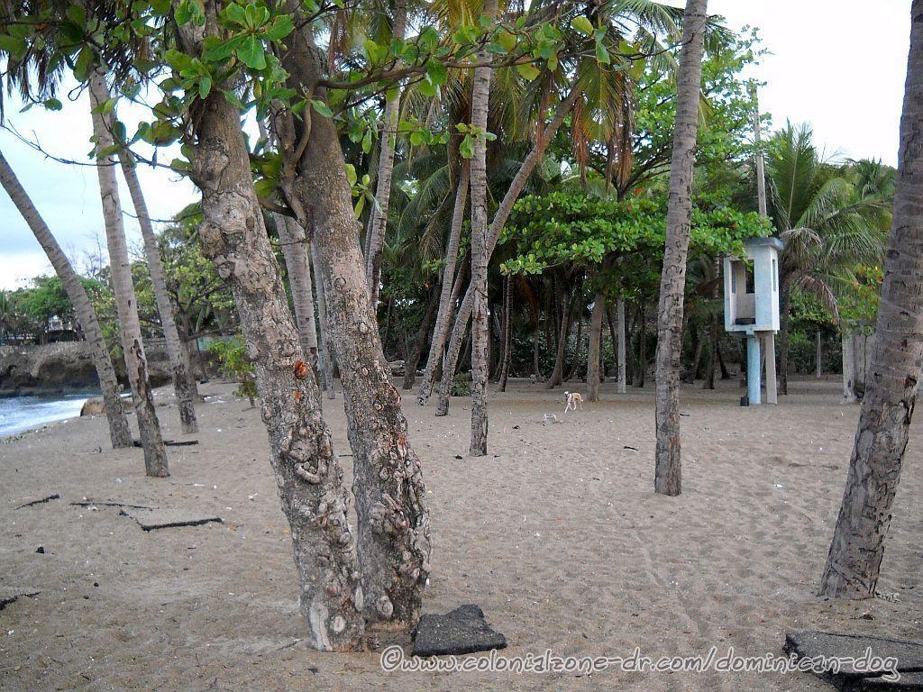 Playa Placer de los Estudios. The locals call it Playa Placer or Playita Montecinos.