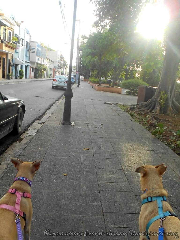 Fortaleza and Parque San José along Calle Jose Gabriel Garcia.