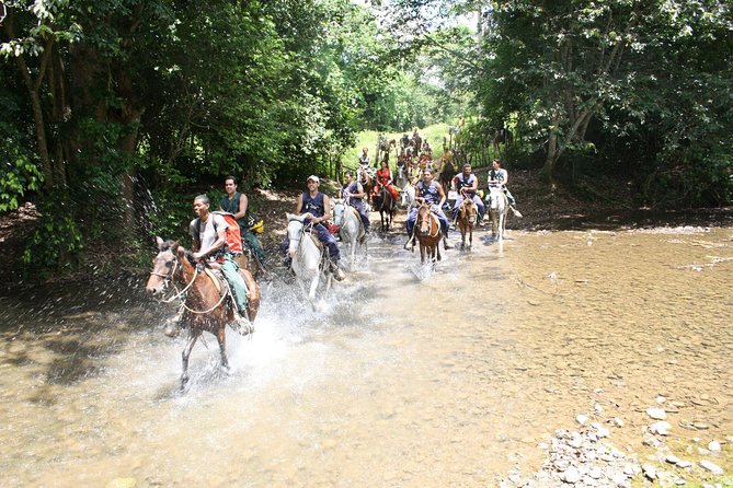 Cueva-Fun-Fun-Adventure-Tour-Horses