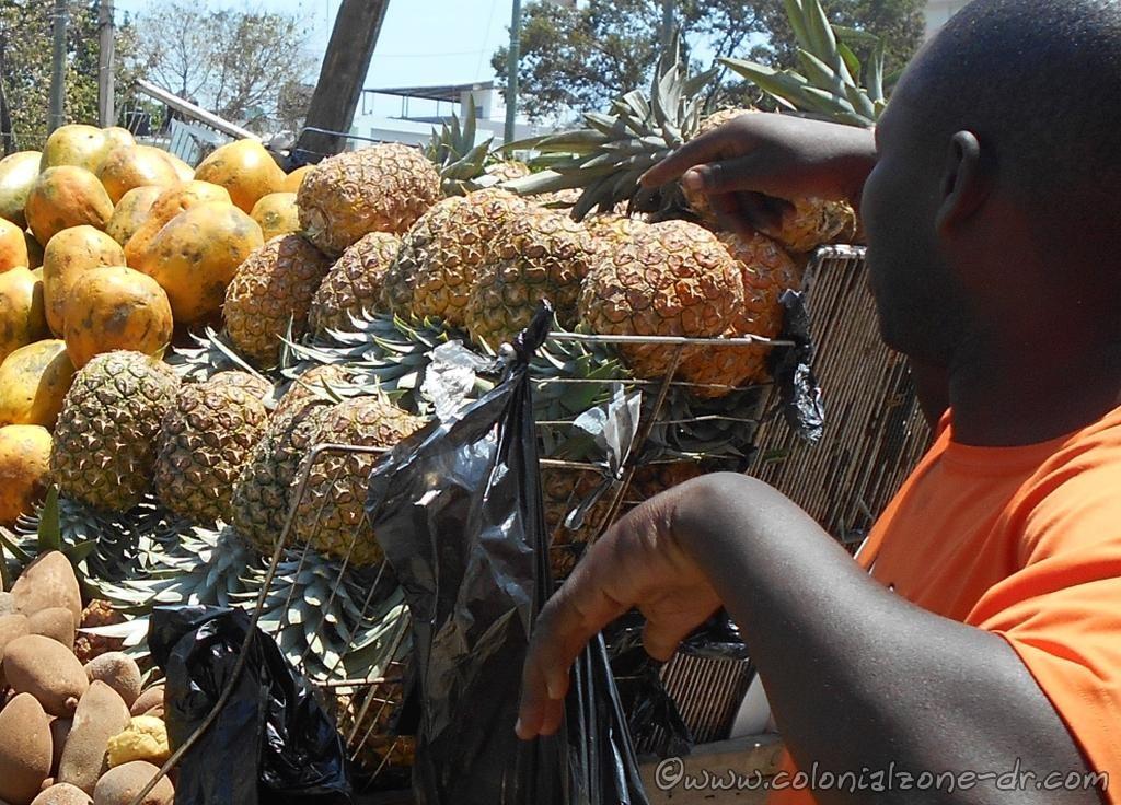 A truck full of pineapples /  piñas