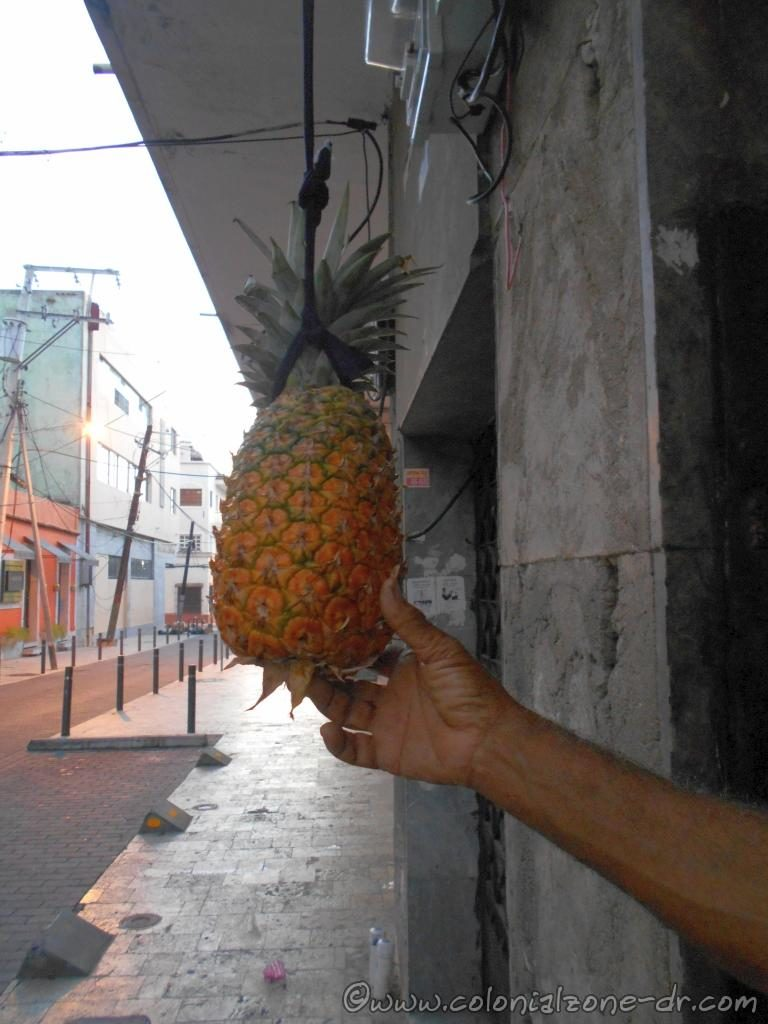 A beautiful ripe pineapple, known as piña here in Dominican Republic