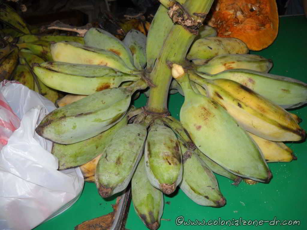 Rulo, another type of Plantain