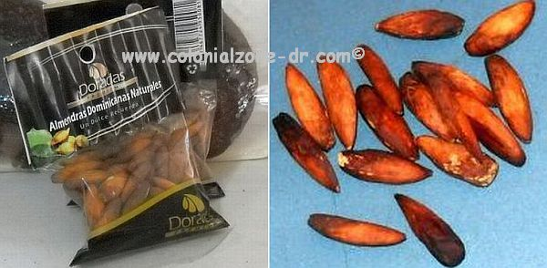 Almendra nuts roasted and packaged ready for eating