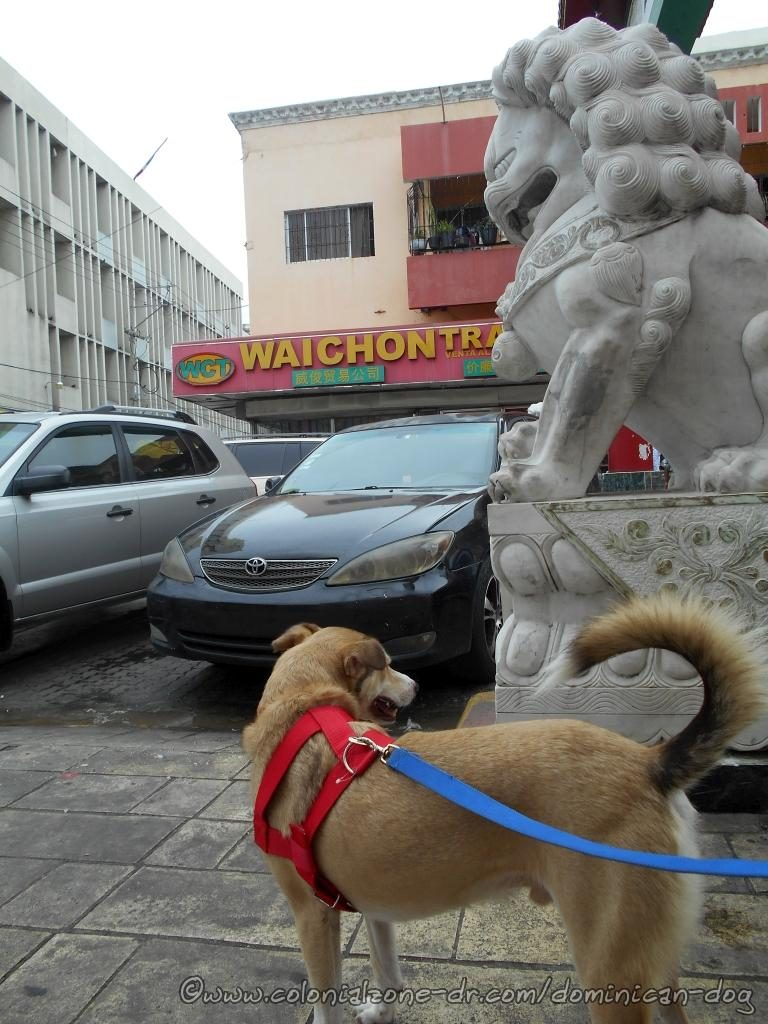 Buenagente poses with the lion at the entrance to Chinatown Barrio Chino Avenida Duarte