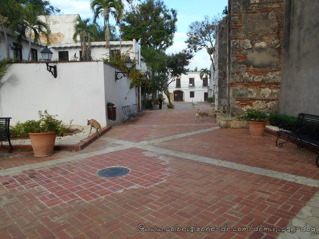 The red brick Plaza María de Toldeo is a nice place for sitting and relaxing