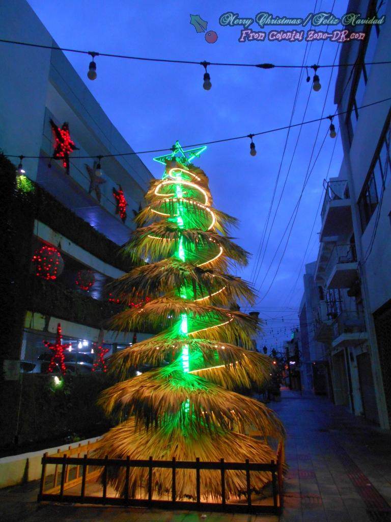 The Christmas Tree on Calle el Conde in the Colonial Zone