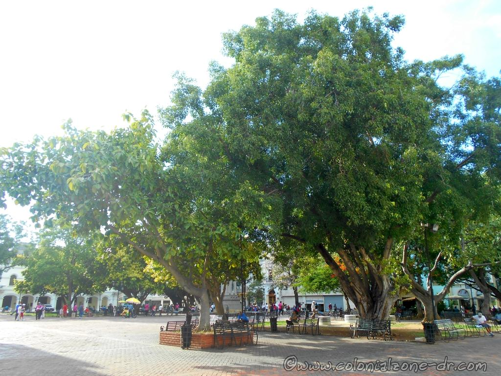 Parque Colón is usually full of tourists and locals enjoying their day